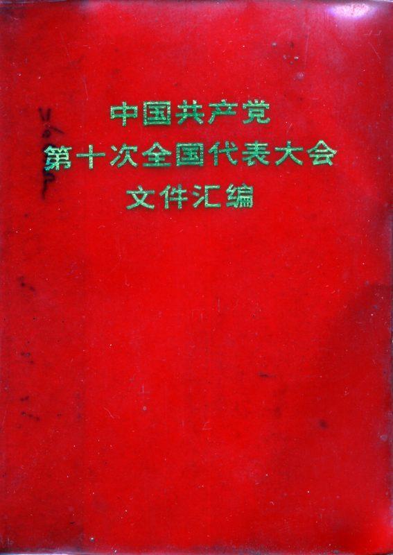 Libriccino cinese, foto italiana